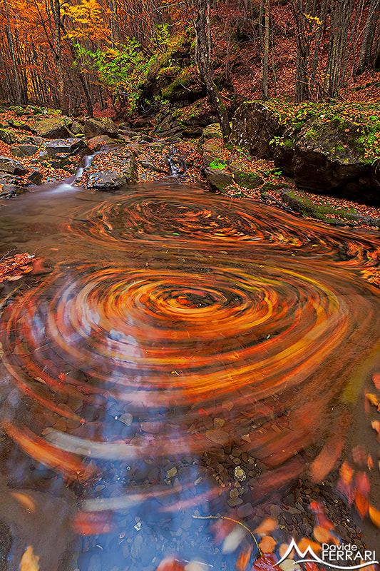 Photograph Swirls of Colors by Davide Ferrari on 500px