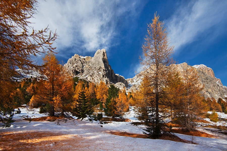 Photograph Winter is coming by Daniel Řeřicha on 500px