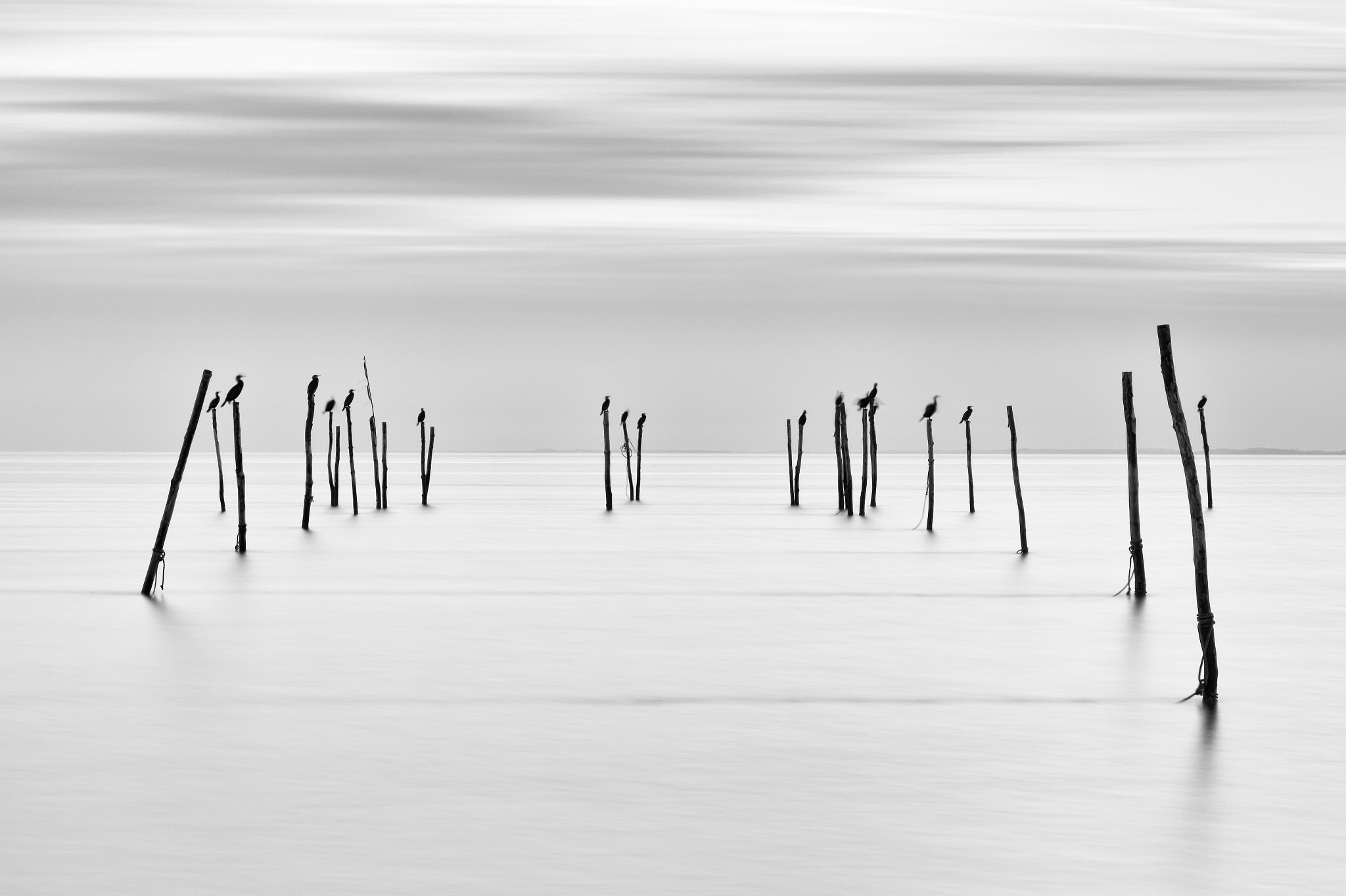 Photograph The Stakes by Steen Nielsen on 500px