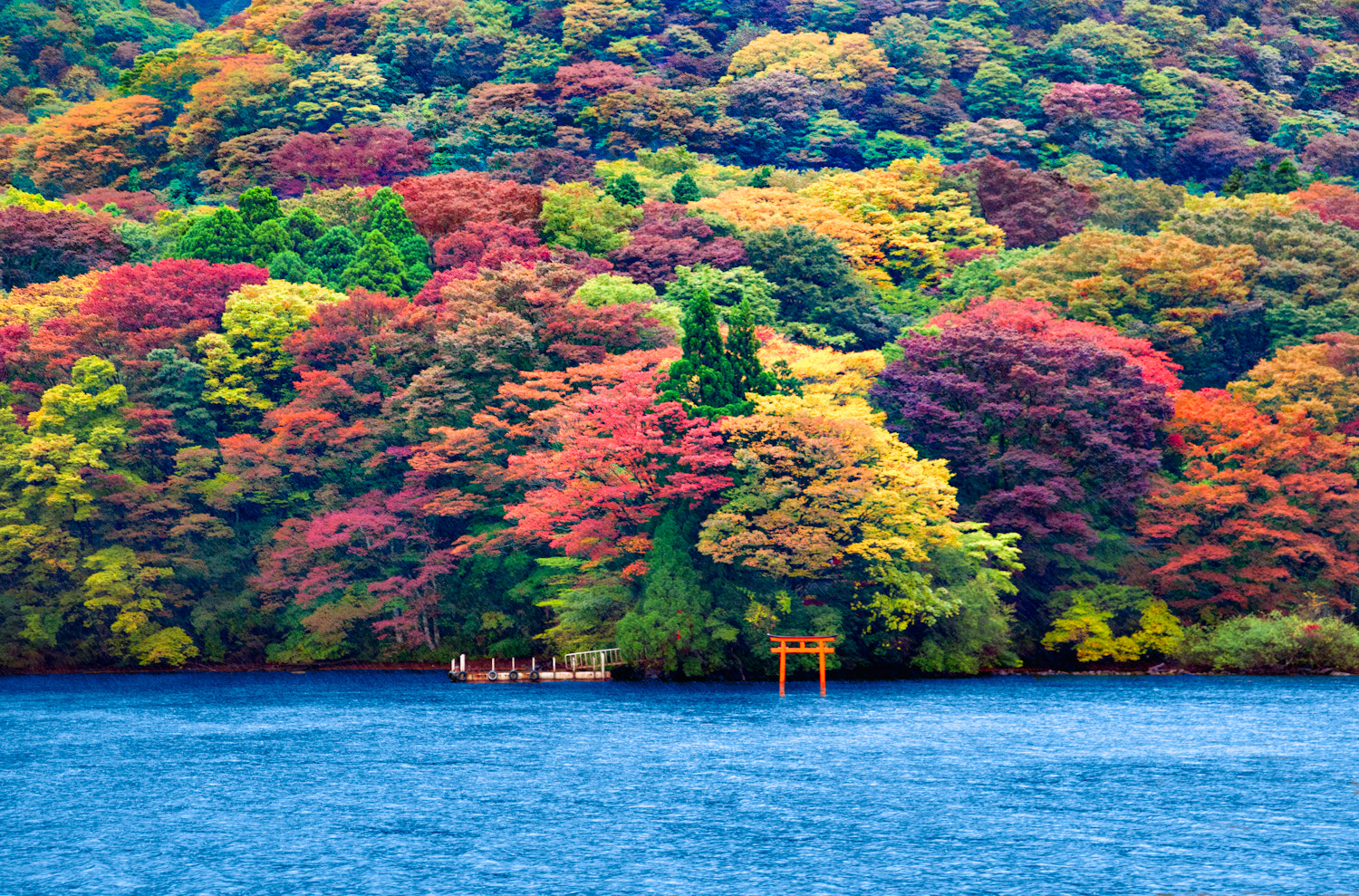 Photograph Ashi Lake, Japan by Ricardo Bevilaqua on 500px