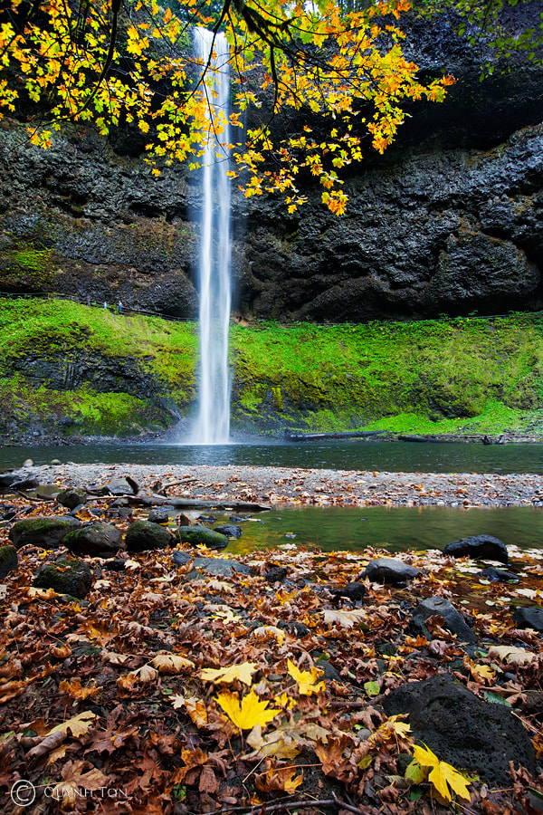 Photograph Silver Falls by Quynh Ton on 500px
