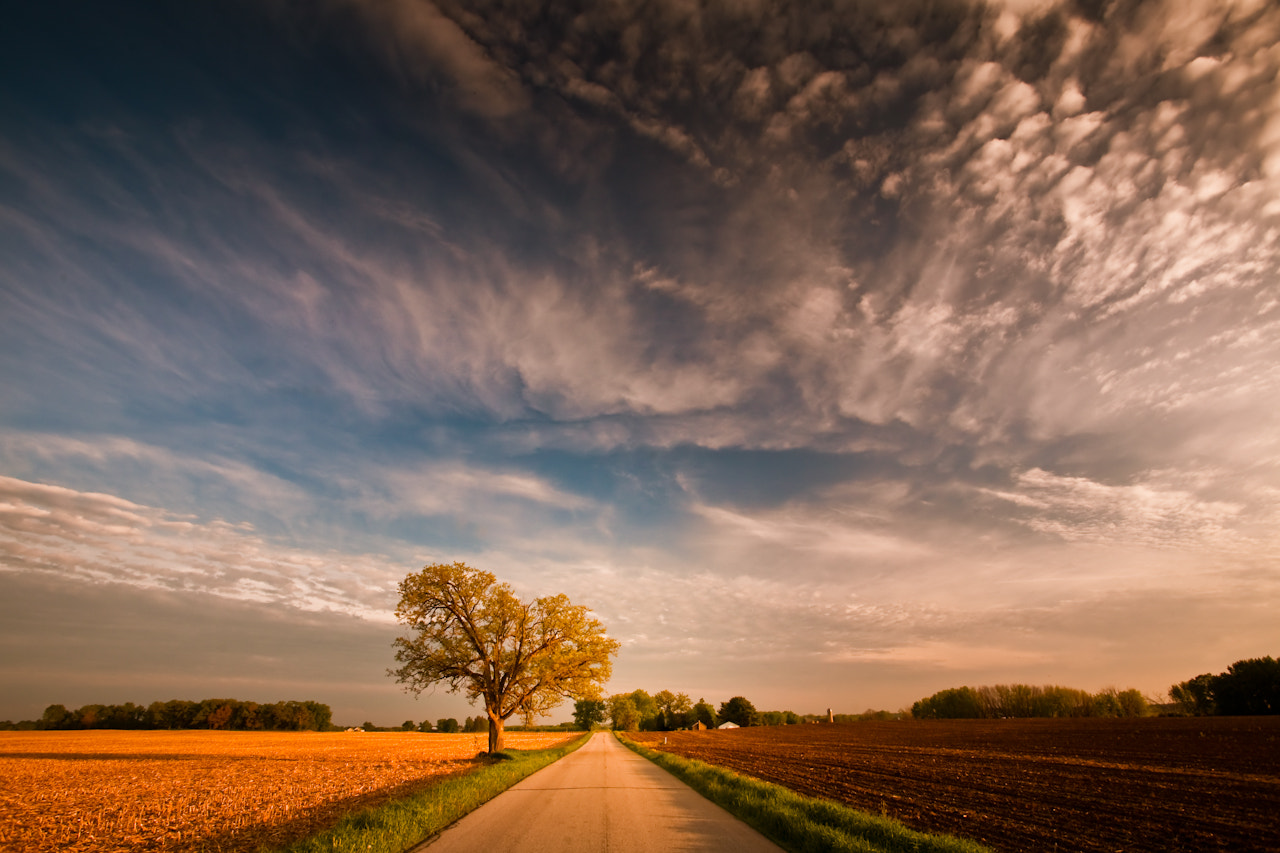 Photograph Any Road Will Get You There by Loren Zemlicka on 500px