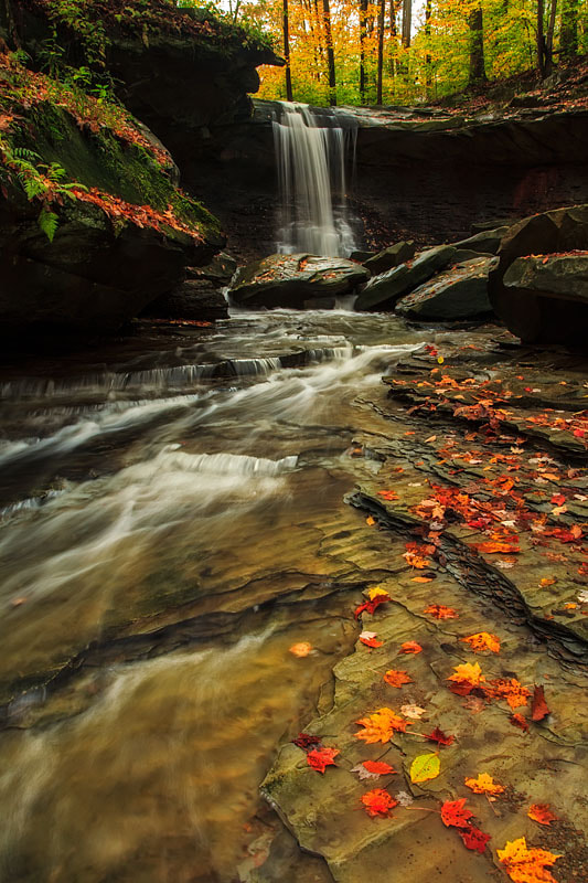 Photograph blue hen falls by thom polimeros on 500px