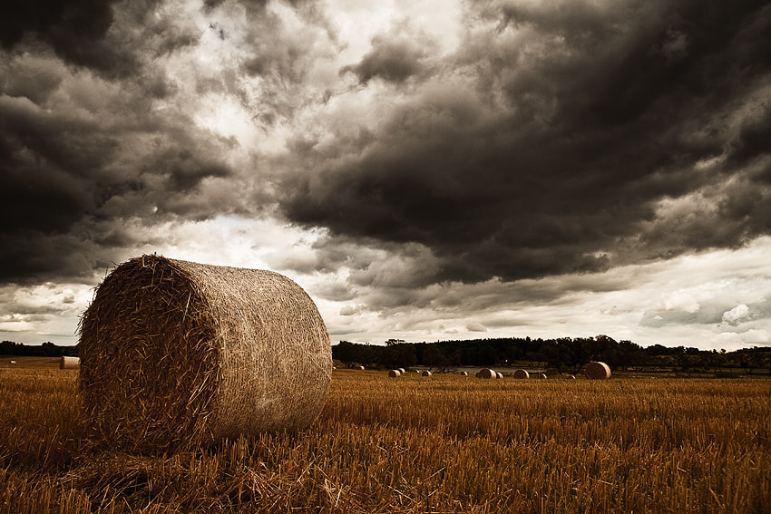 Photograph Hay Bale by Roland Willinger on 500px