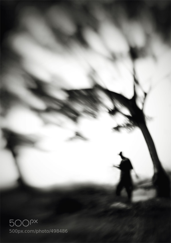 Photograph ............... by Hengki Lee on 500px