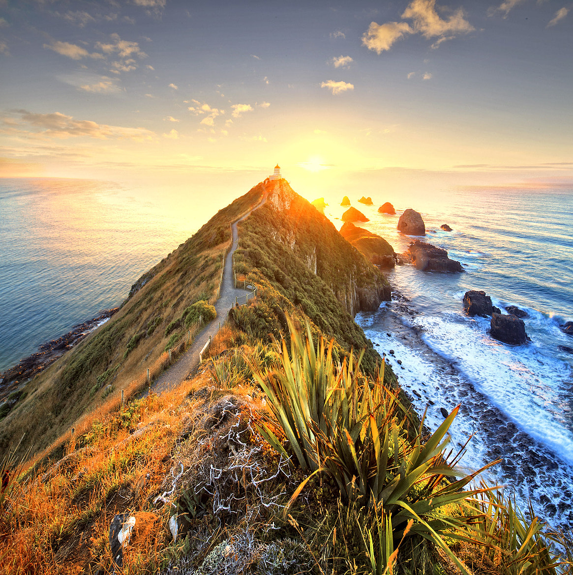 Photograph sunrise over nugget point by Maurizio Rellini on 500px