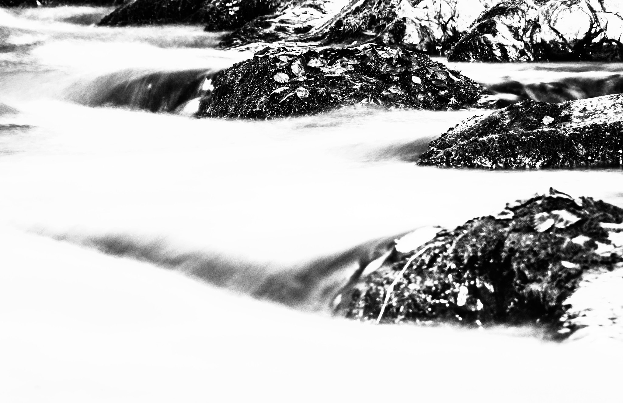 Photograph The river by Lluís Grau on 500px