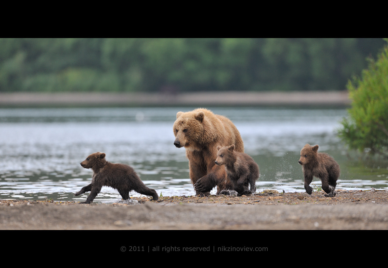 Photograph Catch us if you can ! by Nikolai Zinoviev on 500px