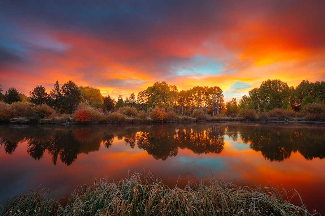 Photograph Autumn Sunrise On The Deschutes by Sean Bagshaw on 500px