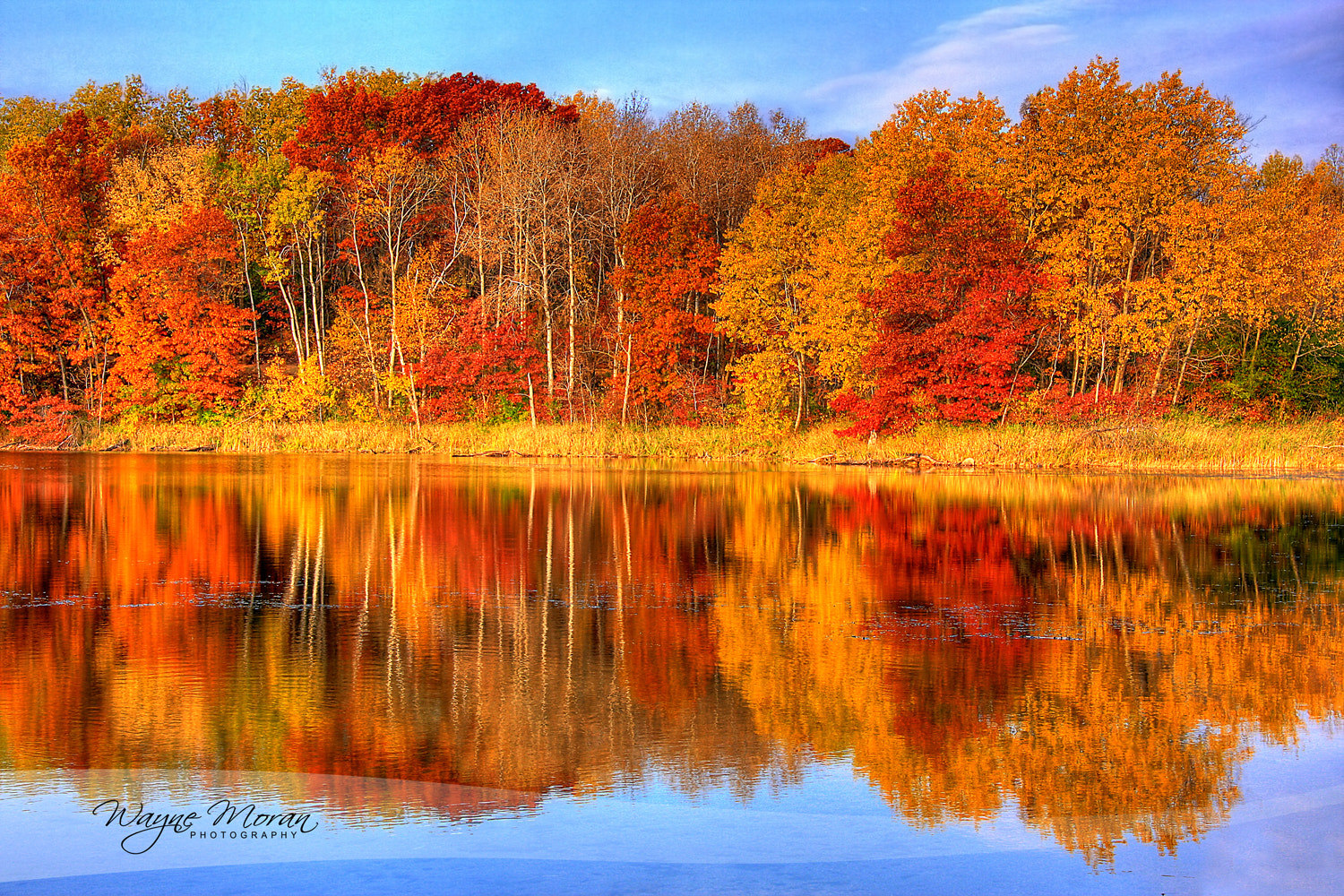 Photograph Autumn Reflections : Minnesota Autumn by Wayne Moran on 500px