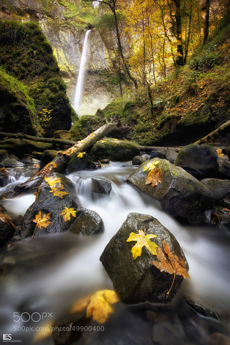 Photograph Elowah in Autumn by Leif Erik Smith on 500px