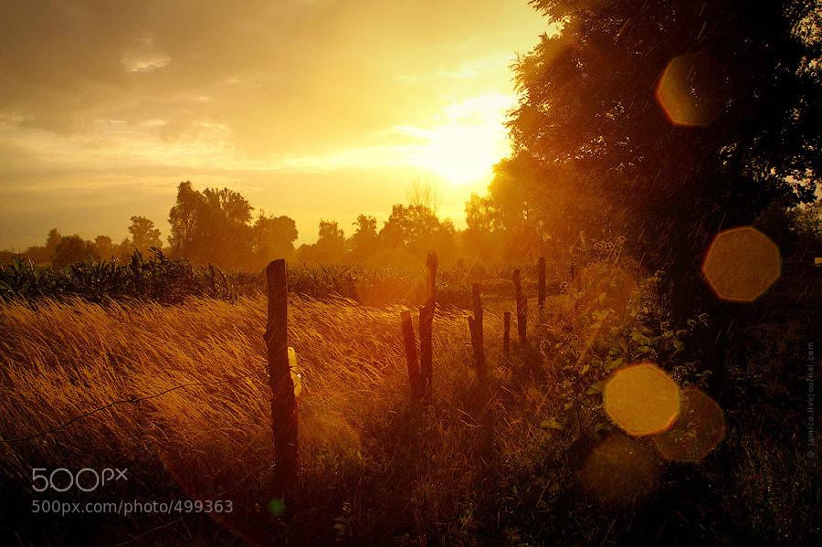 Photograph Rain&Light by Vadim Dorosh on 500px