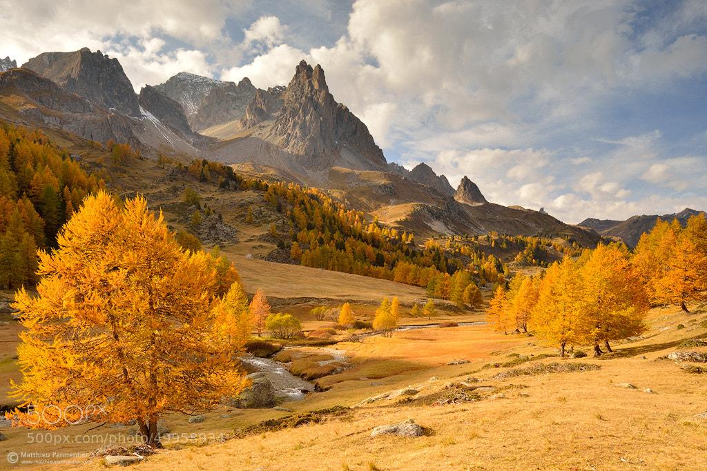 Photograph Autumn splendor by Matthieu Parmentier on 500px