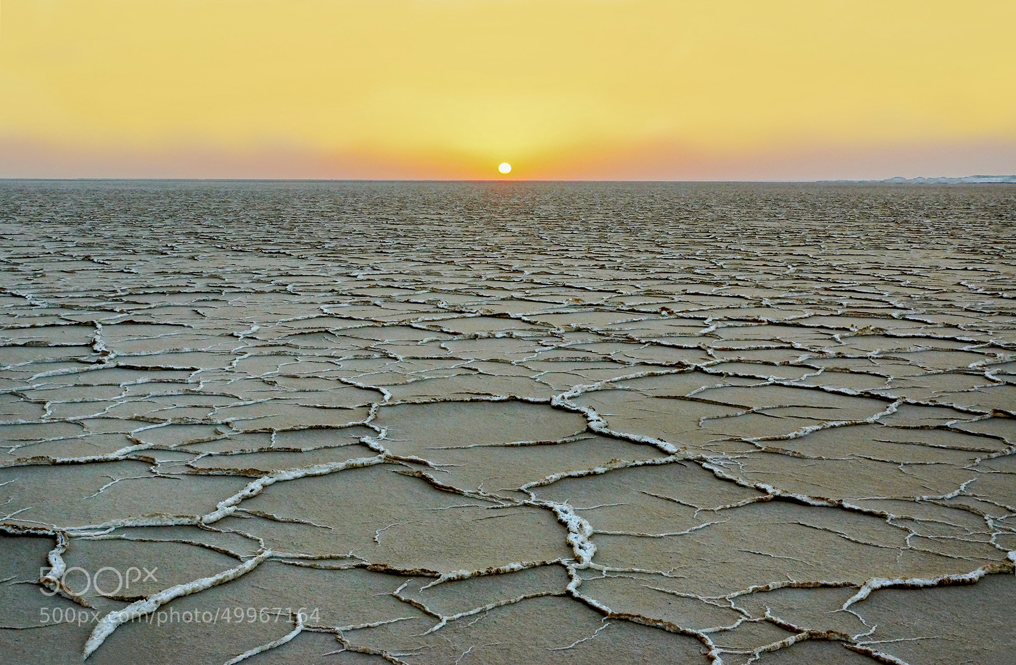 Photograph ~Sun & Salt~ by S'Mojtaba Hosseini on 500px