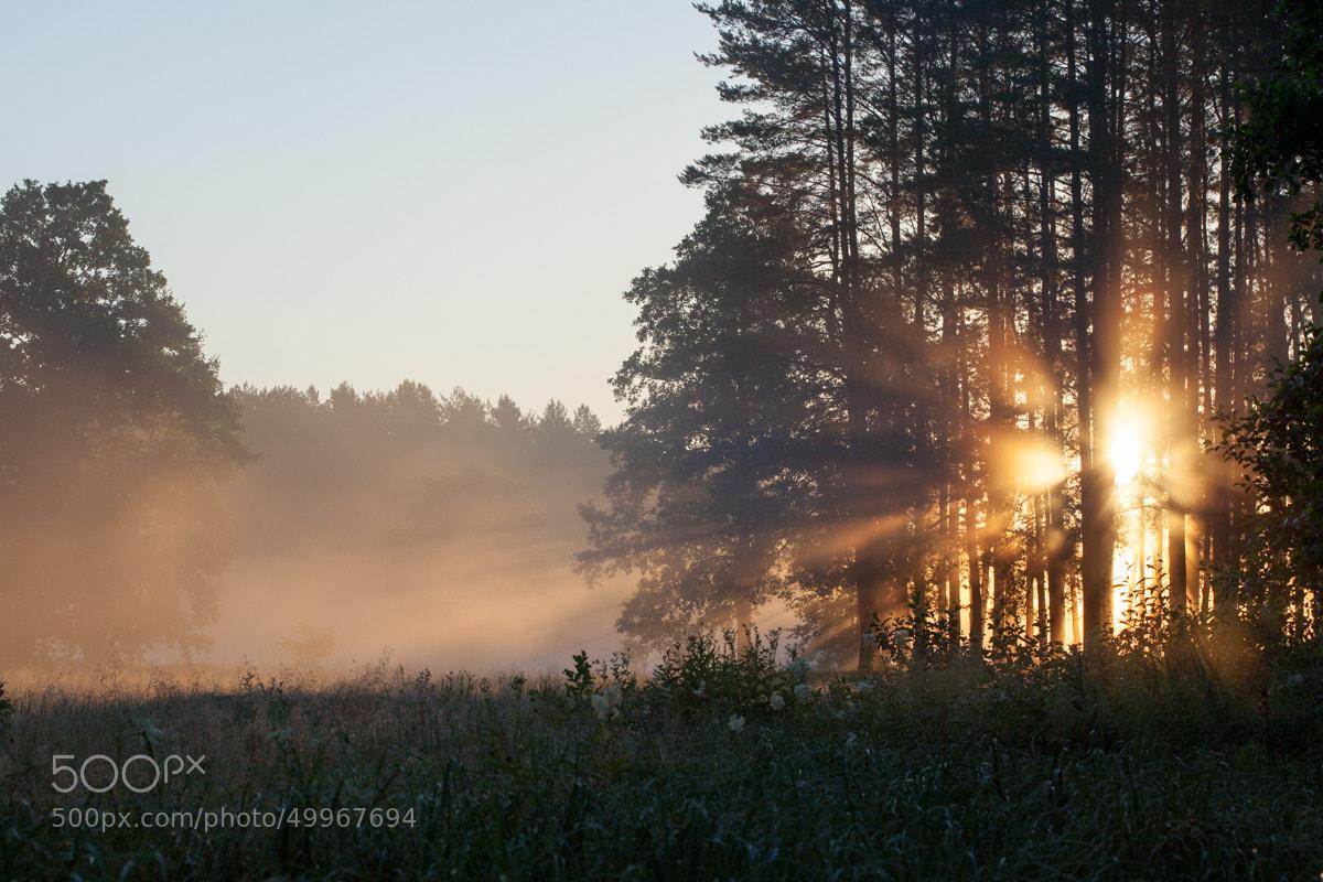 Photograph Flash by Denis Belyaev on 500px