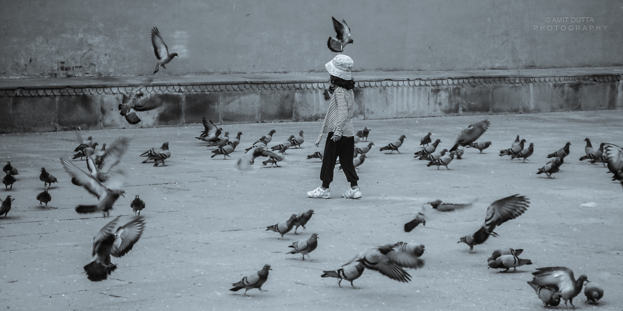 Photograph Among the birds by Amit Dutta on 500px