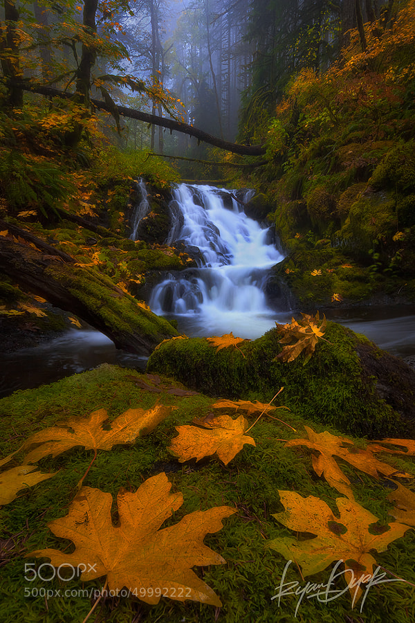 The Terrace by Ryan Dyar on 500px.com