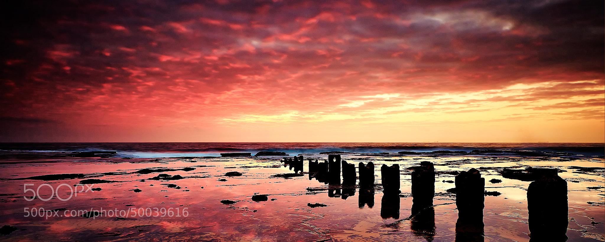 Photograph Fire Sky by Mark Dunham on 500px