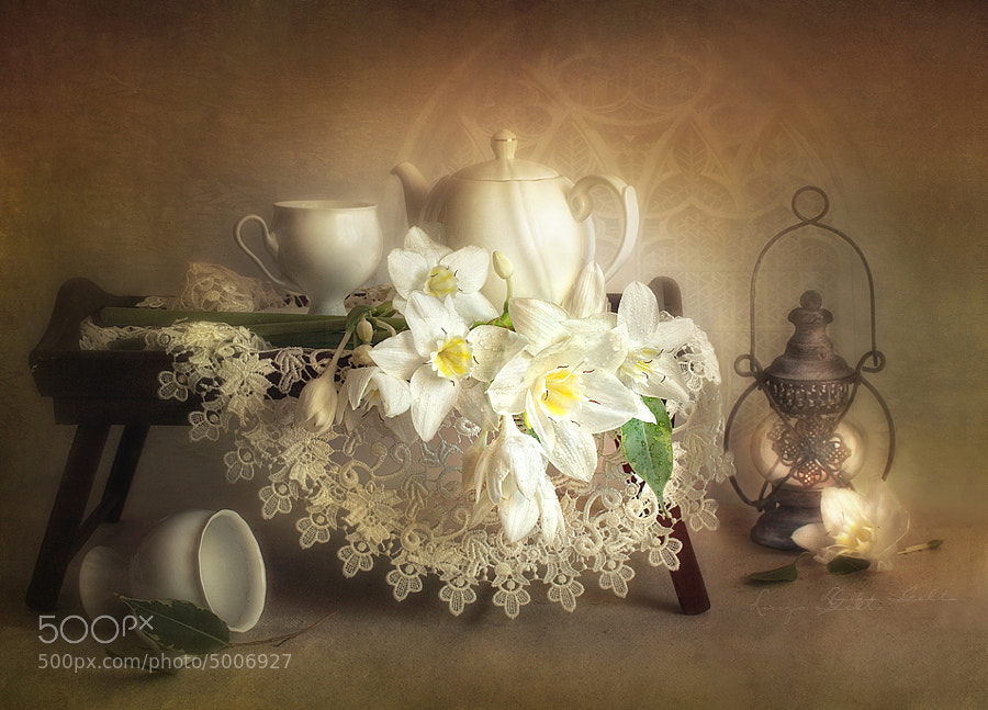 Photograph The old lamp by Luiza  Gelts -            Луиза  Гельтс on 500px