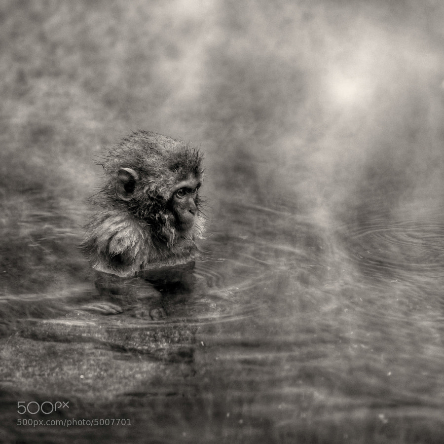 Solemn thought for a boy by regis boileau (thesouthernroute) on 500px.com
