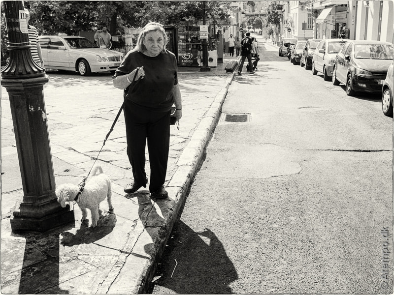 Dogwalking ... Athens view no. 61