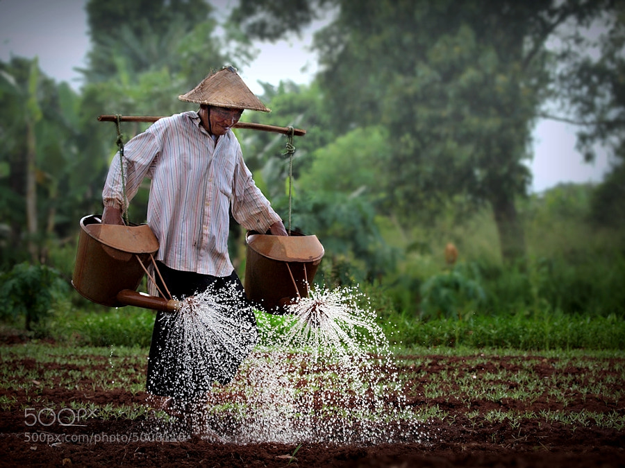 Photograph watering hope by Irawan Subingar on 500px