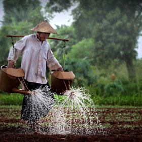 watering hope by Irawan Subingar (Irawan-Subingar)) on 500px.com