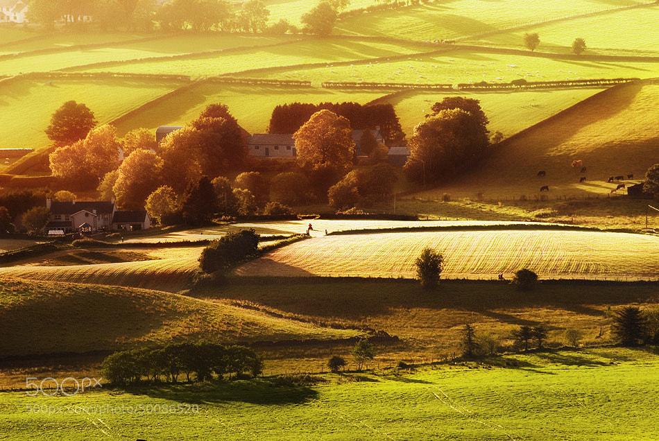 Photograph Symphony of light by Lukasz Maksymiuk on 500px