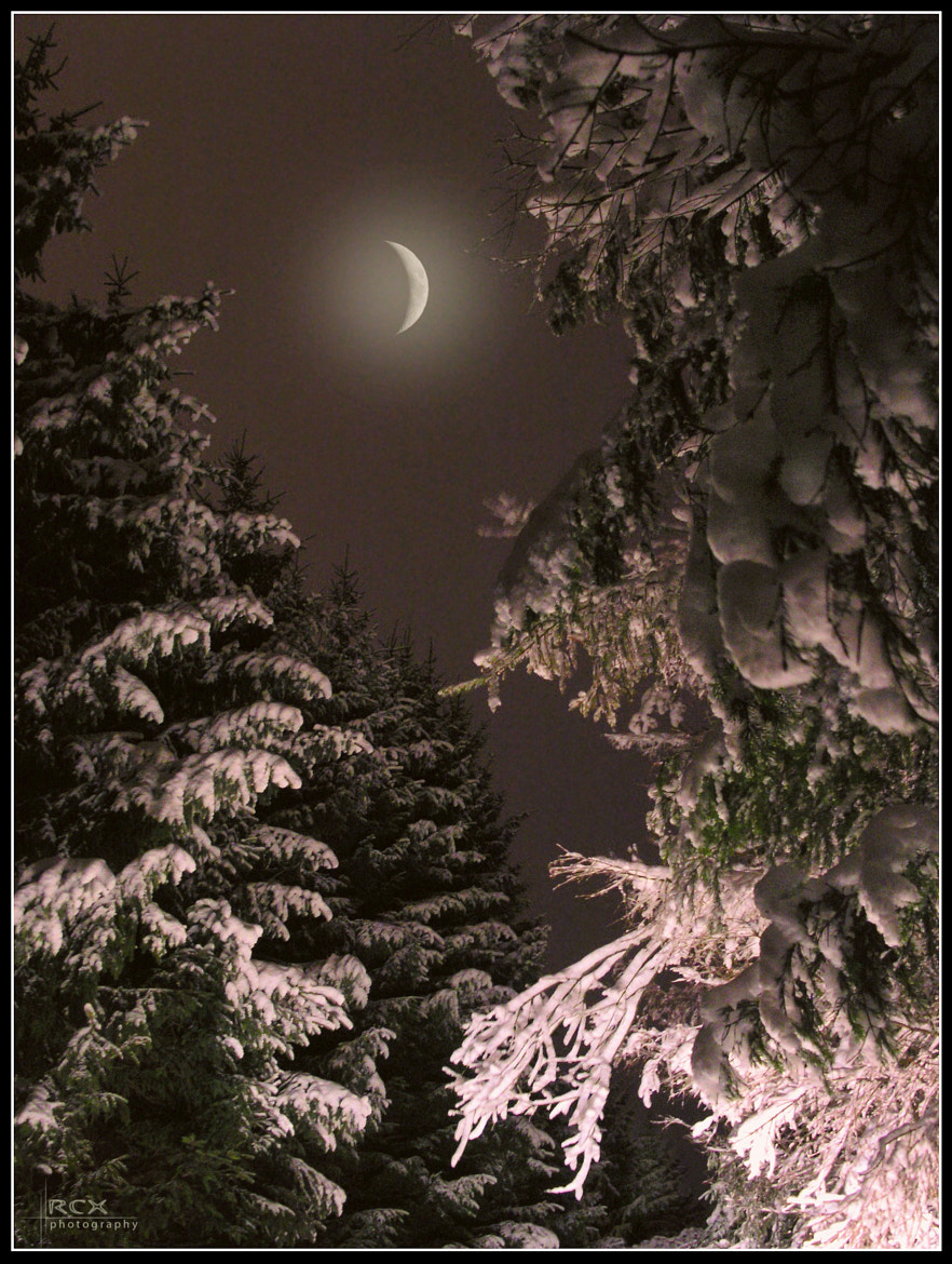 Photograph winter night ... by Raimondas Čekanauskas on 500px