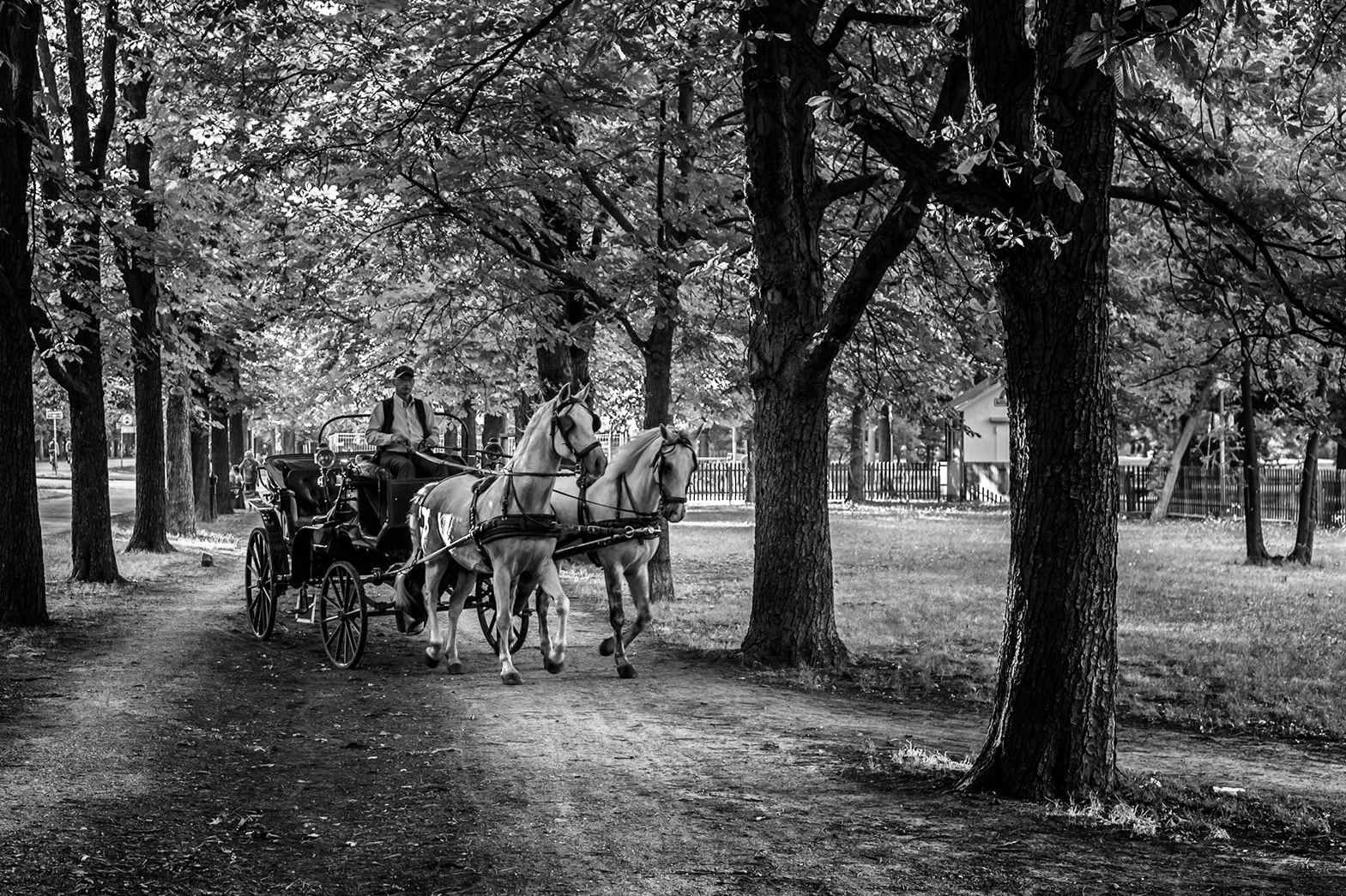 Photograph Carriage by Florian Feuchtner on 500px