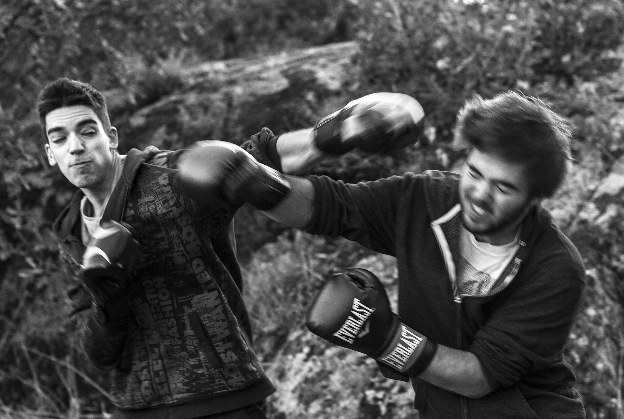 Boxing afternoon