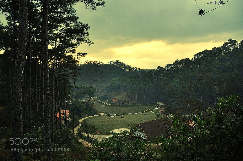 Photograph Dalat - Vietnam by Thuc Nguyen on 500px
