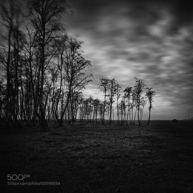 Photograph Untitled by Frodi Brinks on 500px