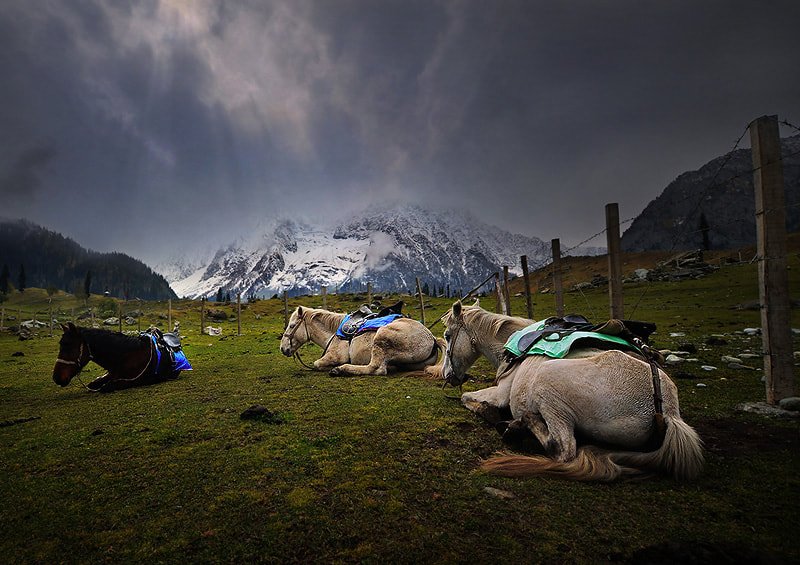 Photograph On the way Srinagar-Leh by Weerapong Chaipuck on 500px