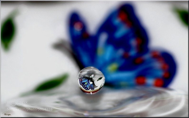 Photograph Drops.. by Nurşen Biçer on 500px