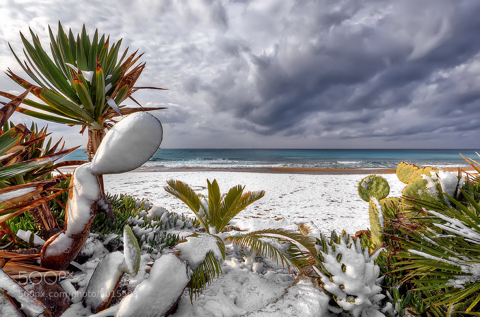 Photograph Tropical ice by Paolo Capoccia on 500px