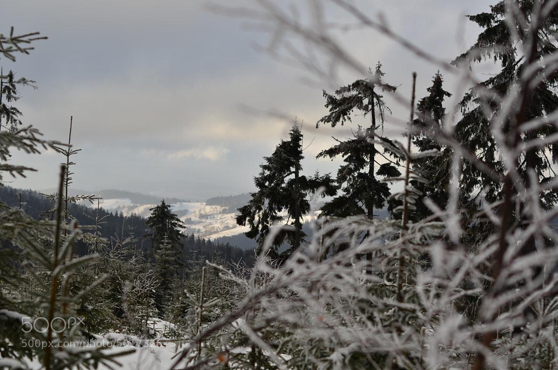 Photograph Landscape from turbacz by Slawek Potasz on 500px