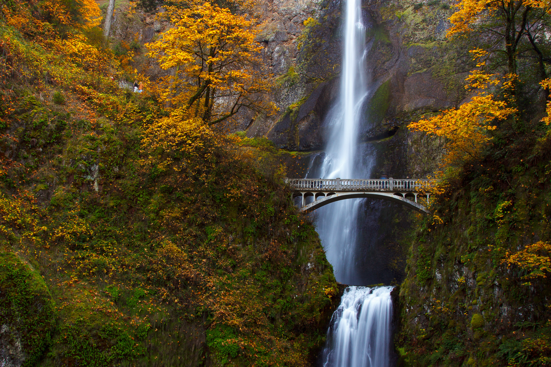 Photograph Multnomah Falls in Full Color by Chad Scott on 500px