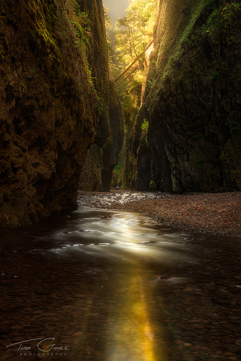 Photograph Into the Onta by Ted Gore on 500px