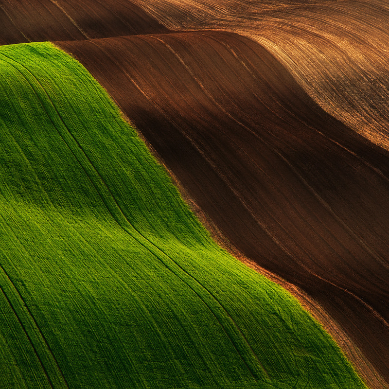 Photograph Magic carpet by Jozef Micic on 500px