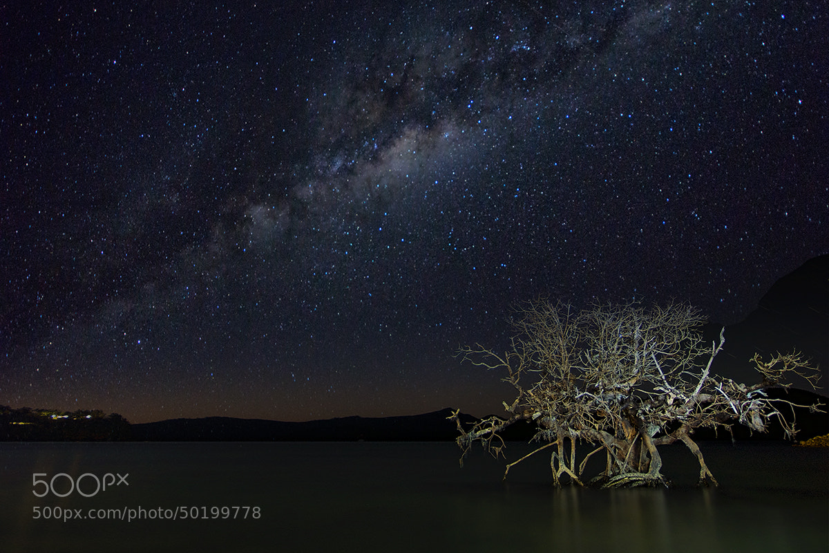 Photograph Milky by Dave Cox on 500px