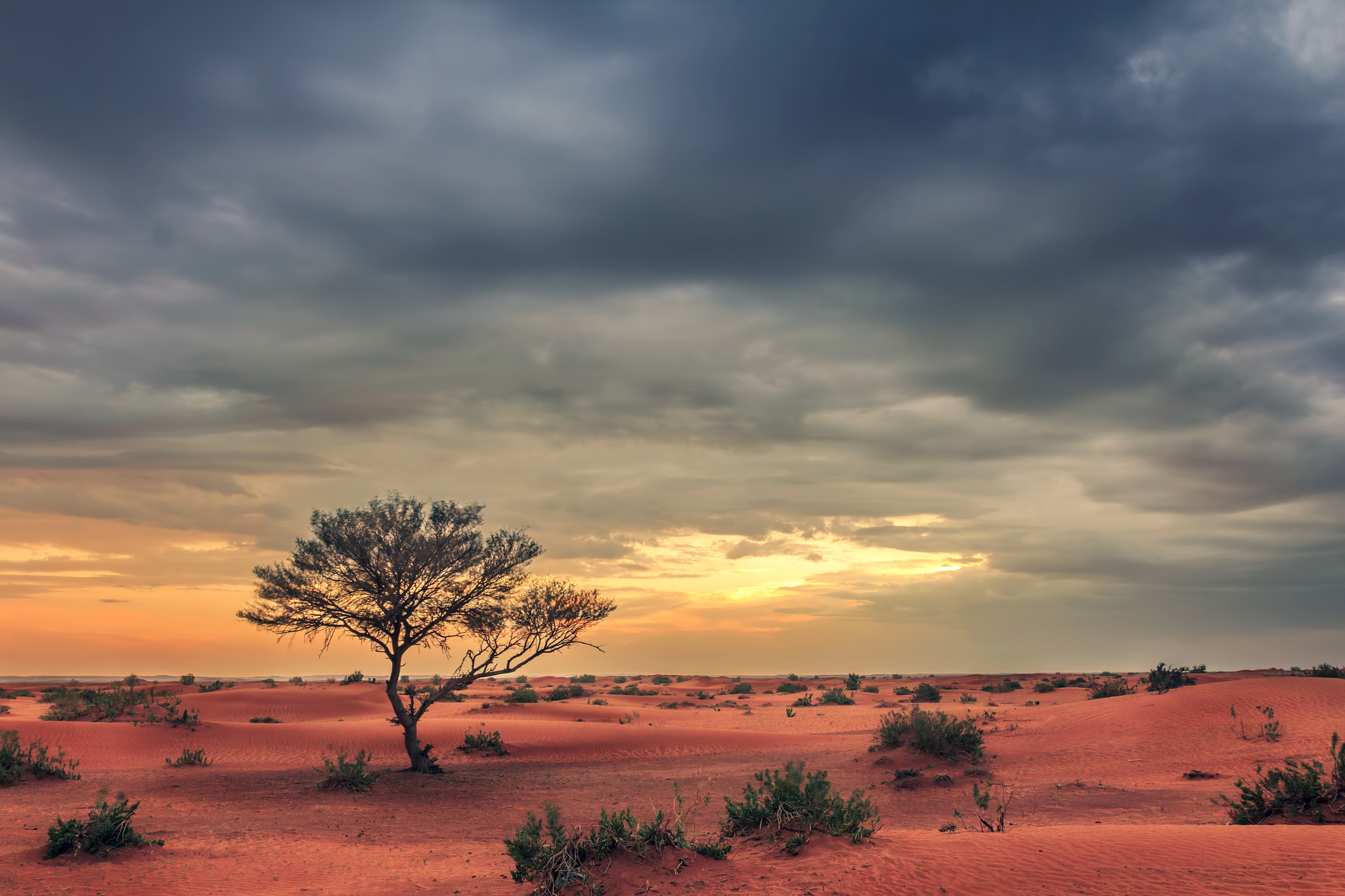 Photograph Great Day by Ismaeil Alsalman on 500px