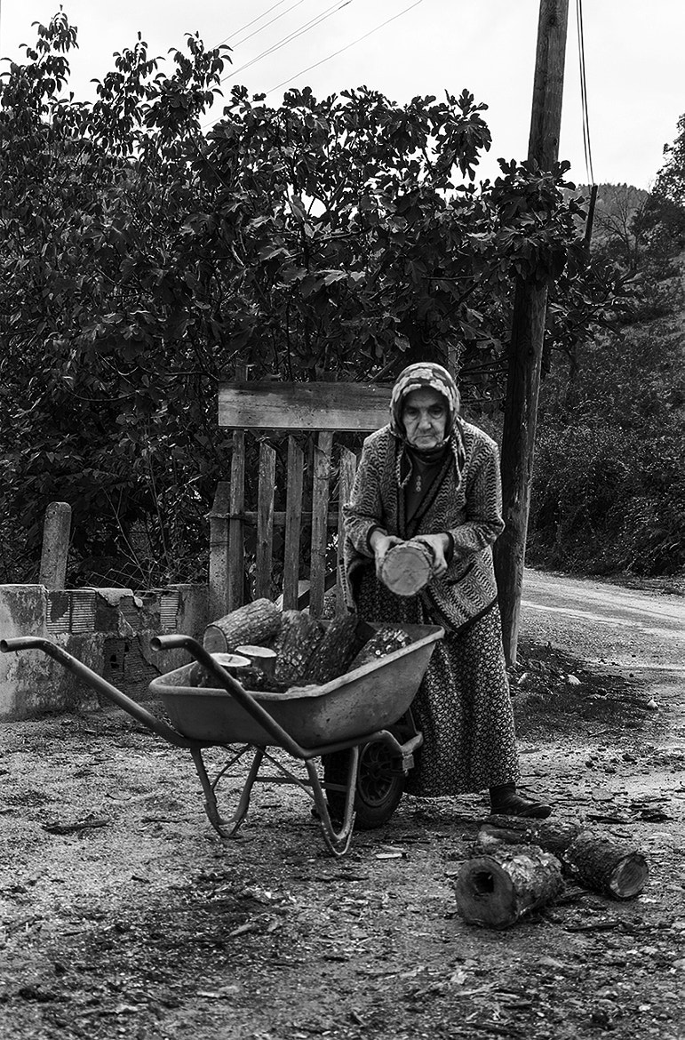 Photograph The Wood Gatherers by Seyhan Gungor on 500px