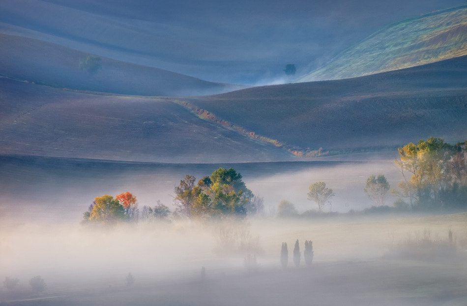 Photograph In my dreams by Aleš Komovec on 500px