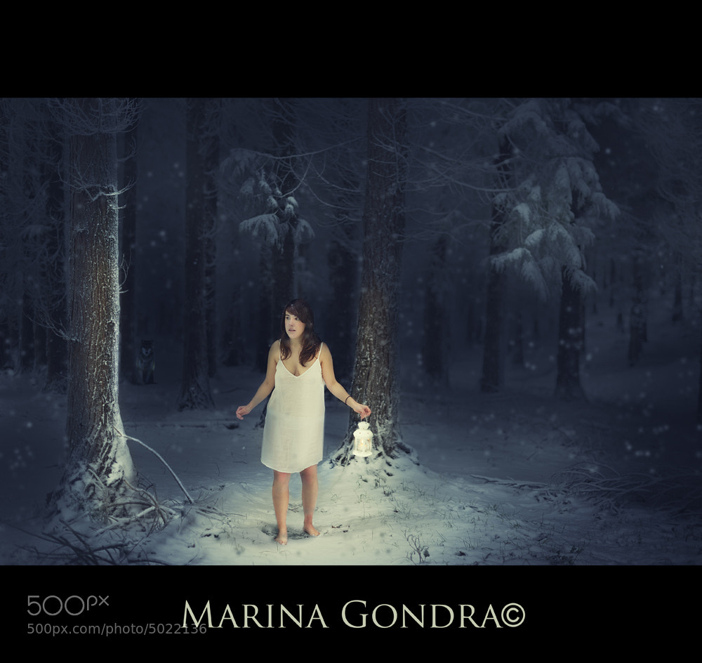 Photograph Untitled by Marina Gondra on 500px