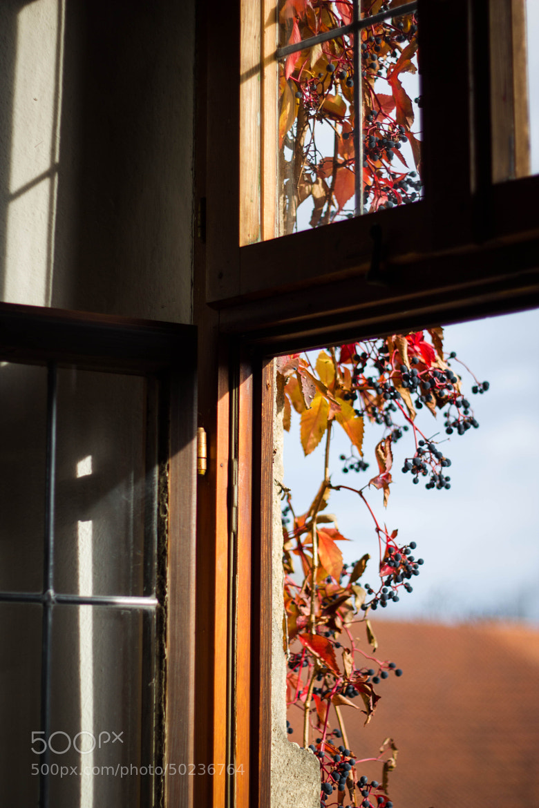 Photograph Autumn window by Heike Kitzig on 500px