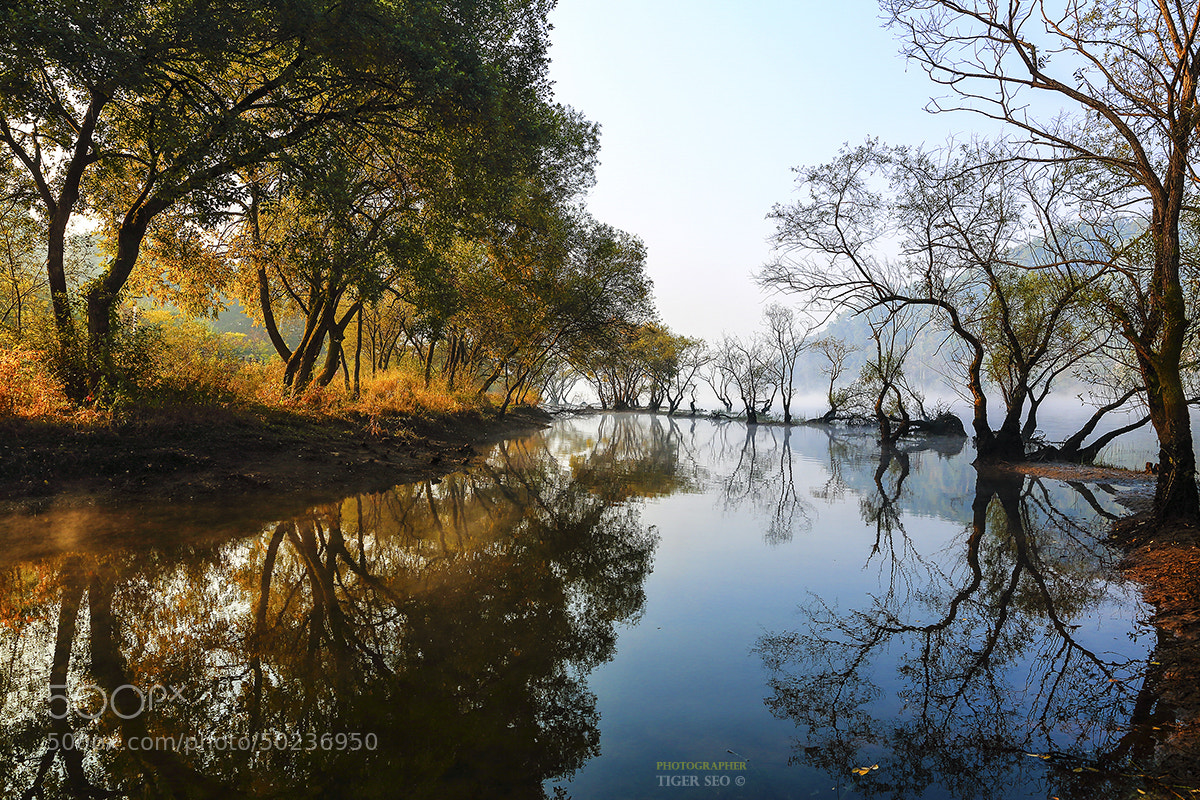 Photograph lohas road #1 by Tiger Seo on 500px
