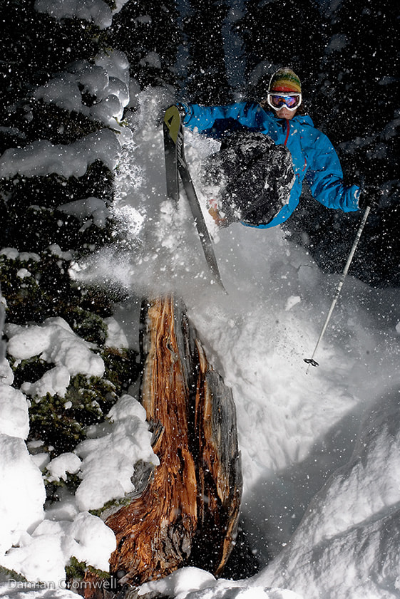 Photograph Ski in the Trees by Damian Cromwell on 500px