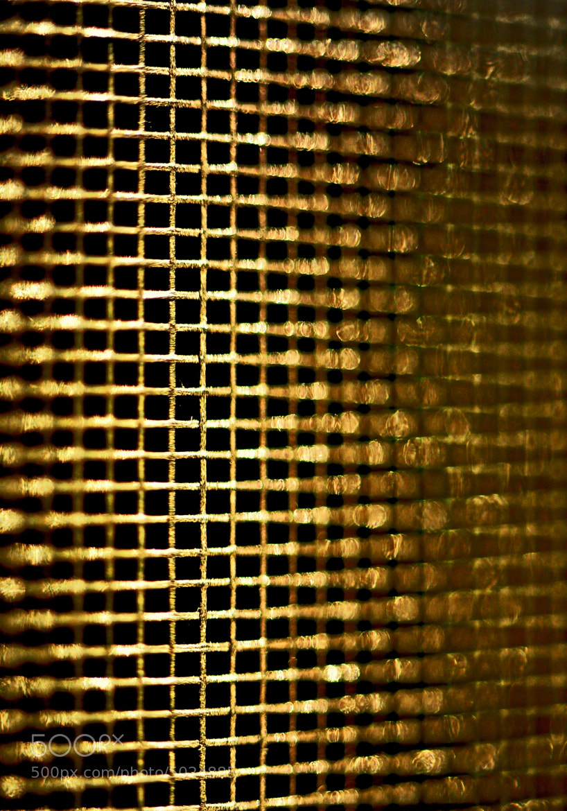 Photograph Window Screen by Kristie McClenny on 500px