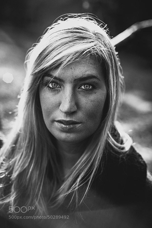 Photograph Last Sun by Sebastian  Warneke  on 500px